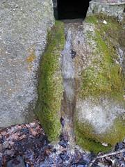 20150319_138_RU5_Steinhof (weisserstier) Tags: vienna wien wanderung steinhof rundumadum