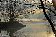 Alba sul Ticino (alfvet) Tags: sunrise river ticino alba fiume natura sole nebbia parcodelticino platinumheartaward veterinarifotografi