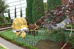 Golden Coach and Horses on a bed of Tulips (tiger289 (The d'Arcy dog supporters club)) Tags: flowers trees cactus horses plants cats fish cars chicken dogs beer buses animals ferry cacti waterfall singapore dubai village fishermen orchids tulips dragonflies crab insects georgetown malaysia koi noodles carp penang cloudforest canopy kampong succulents melaka malacca penanghill limos bentong karak skywalk johore skylift marinabay goldencarp cloudwalk oldgeorgetown flowerdome gardensbythebay goldencoach silvergarden supertrees