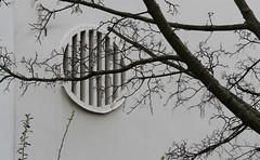 Fassadenrund, Darmstadt 2015 (Spiegelneuronen) Tags: bäume darmstadt fassade