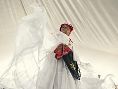 SG105051 (Isai Carreto.) Tags: travel mxico dance veracruz puebla baile folklor maverick sonjarocho bailables trajestipicos entreteiment