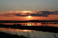 Saline Sunset (Strocchi) Tags: pink sunset sky cloud sun water canon tramonto nuvole rosa cielo sole acqua ravenna tamron1750f28 eos400d salinedicervia