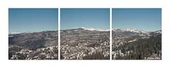 Triptych at Carson Pass (Daiku_San) Tags: california film mediumformat triptych ishootfilm hasselblad500cm usetheforce colorfilm kodakektar100 epsonv500 carlzeissplanarct8028
