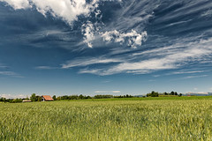 Country landscape in Brianza (Italy) (clodio61) Tags: blue roof sky italy house plant color tree green nature field clouds rural landscape photography spring europe day natural outdoor country may sunny brianza cloudscape monza lombardy tregasio