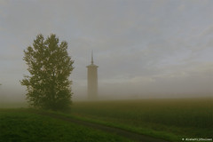 watertoren dirksland / mist (misha vijfhuizen) Tags: morning mist holland tree green netherlands dutch field grass fog landscape groen outdoor awesome foggy nederland boom gras mooi veld beautifull goeree overflakkee landschap zuid watertoren goereeoverflakkee flakkee southholland akker dirksland
