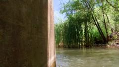 The coolest cool spot (EllenJo) Tags: arizona river pentax tube raft verderiver riparian sundayafternoon june5 clarkdale 2016 ellenjo summerinarizona ellenjoroberts tuzigootbridge tuzirap pentaxqs1 cruisingdowntheriveronasundayafternoon