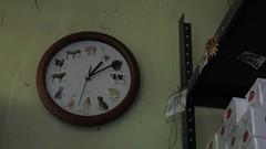 La 1:10 p.m. (Xic Eseyosoyese (Juan Antonio)) Tags: china mxico canon de pared la is 110 que powershot cada tienda hora reloj su animales pm pero chino sonido hacen barato zote jabn miscelnea efectivo autentico sx170