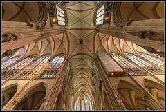 Im Dom zu Kln / inside view of the cathedral of cologne (rapp_henry) Tags: cathedral kathedrale cologne kln worldheritage gotik weltkulturerbe denkmal historisch gothik wahrzeichen nikond800 tamron1530mm28