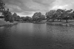 Cornbury Canal (Joe Thabet) Tags: blackandwhite uk england river water trees nature landscape outdoor cubs sky lake serene refelection monochrome