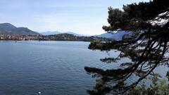 isole borromee (36) (giangian239) Tags: lago acqua blu giardino maggiore albero verde prato statua monumento isola isole borromee madre bella superiore panorama paesaggio lungolago