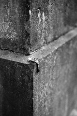 Graveyard bycatch (Tiefengeist) Tags: 50mm kodak tmax 14 delta nikonf100 100 ilford kodaktmax ilforddelta100 kodaktmaxdeveloper14 sigma50mmf1 4exdghsm