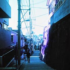 (  / Yorozuna) Tags: road japan tokyo alley downhill alleyway slope       filmshot   flexaretvi slopingroad  shinjukuward filmscanning  flexaretautomatvi wakamatsukawada lomochromepurple lomochromepurplexr100400