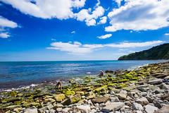 Secret Beach Durlston - July 2016 (6 of 6).jpg (philipc) Tags: blue sea summer sky clouds rocks secretbeach cliffs dorset swanage durlston