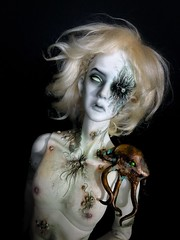 Hans von Rungholt (Sadomina) Tags: doll bjd abjd balljointed ringdoll sadomina zombie ghost kane rungholt faceup