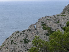 Cap Formentor (andrisa1) Tags: sacoma alcudia sller tramuntana petra rovinj chiemsee