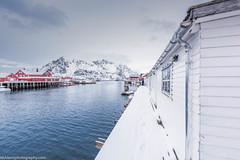 Henningsvaer harbourg (Nick Lens Photography) Tags: sky water snow winter gitzo outdoor landscape photograph harbourg nikkor nikon norway henningsvaer lofoten