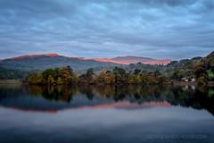 Lake District Sunrise (Old-Man-George) Tags: alpenglow georgewheelhouse landscape rydal rydalwater uk water autumn british cumbria lake lakedistrict sunrise trees wwwgeorgewheelhousecom d887136