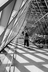 Seattle Central Library DSC04017-Edit (nianci pan) Tags: abstract seattle centrallibrary curve line pattern geometry geometric city cityscape landscape urban nianci pan sony sonyalpha dslr sonyphotographing architecture building reflection