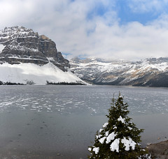 Bow Lake_Glacier Way to Jasper_DSC_2600_stitch_D (renrut01) Tags: bow lake glacier way banff canada louise frozen icew water snow