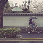 Tokyo 3540 thumbnail