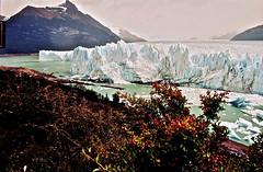 28-16 (LEROYannie27) Tags: glacier faade