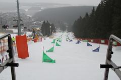 Qualifikationsläufe zum Snowboard Weltcup PSL 2015