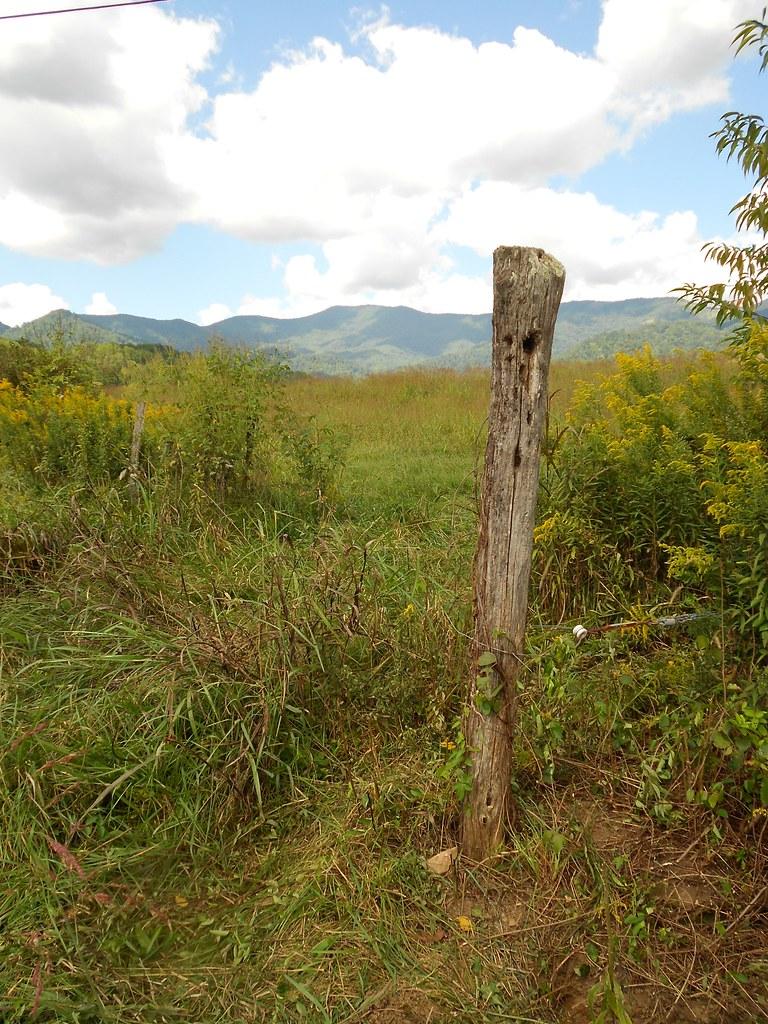 Old fencepost