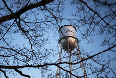 2015 ERIN E. MIZELLE (erinmizelle) Tags: winter sunset tree students liberty book nc watertower assignment photojournalism documentary northcarolina treebranches smalltown rcc randolphcommunitycollege smalltownliberty rccpj2015 rccphotography erinmizellephotography