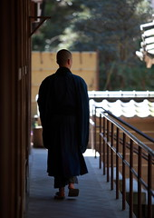 A Zen Monk In Kamakura (El-Branden Brazil) Tags: japan asian japanese asia buddha buddhist kamakura religion monk buddhism holy sacred mystical enkakuji kanagawa robes holistic