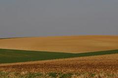 fields and lines (Xtraphoto) Tags: brown green field lines canon eos linie feld felder minimal line landschaft emptiness acre acker landcape 30d leere linien
