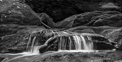Stream Keeper (Skyelyte) Tags: blackandwhite nature water monochrome forest river landscape blackwhite waterfall stream outdoor relaxing scenic newengland trail handheld soothing wolcottct img2026 slowshudderspeed mattatuckriver