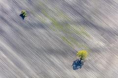 Isolated (Aerial Photography) Tags: two tree field by landscape island outdoor landwirtschaft feld aerial diagonal insel agriculture landschaft baum deu zwei singletree luftbild diagonale leaftree luftaufnahme obb einzelbaum bayernbavaria deutschlandgermany laubbaum deciduoustree ackerbau foliagetree tsling a fotoklausleidorfwwwleidorfde weitfeld tslinglkralttting 06052016 5sr15442