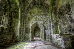 Kilcooley Abbey (robertdownie) Tags: old uk ireland england cold building abandoned church abbey stone architecture moss europe medieval tipperary kilcooly gortnahoe