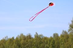 La Hulpe - Prenez l air (26) (Patrick Williot) Tags: la air fete chateau brabant domaine cerfs volants wallon solvay hulpe