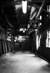 Cleared (think4d) Tags: alt fabrik gang metall industrie dreck tiltshift ausgang unschrfe neonrhren louise3 fen klappen brikettfabrik domsdorf