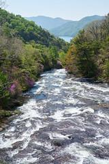 Ryuzunotaki Waterfall (upper) (peaceful-jp-scenery) Tags: nature landscape waterfall sony nikko     ryuzunotaki a7r emount 7r ilce7r fe24240mmf3563oss