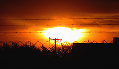 Innerexplosion (MARK2K15) Tags: sunset orange sun inspiration black art love girl yellow dark dramatic indie barbedwire drama tumblr vsco instagram