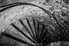 Het Belfort van Gent (J.a.Salgado) Tags: city blackandwhite bw tower stone architecture stairs nikon europa europe belgium d750 ghent gent belfort arquitecture gante belgien blgica flandes tamron2470mm tamron2470f28 nikond750