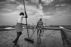 Salt Pan #12 (Ravikanth K) Tags: 500px saltpan workers people men salt pan labourers dailylife dailywork extraction work life job sticks making production marakkanam villupuram tamilnadu india hard monochrome outdoor crystals saltcrystals sunny hot