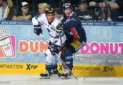 #22 Brian SALCIDO in action (kirusgamewornjerseys) Tags: game ice hockey del brian worn jersey erc eishockey ingolstadt salcido