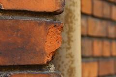 we're travelling leaving behind a treasured memory (raumoberbayern) Tags: abstract wall dof bricks minimal latvia riga mauer lettland robbbilder ziegel urbanfragments