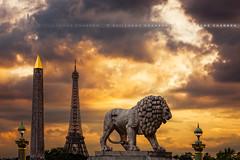 J'aime plus Paris  (Guillaume Chanson) Tags: sunset paris france canon ledefrance place eiffeltower lion toureiffel concorde coucherdesoleil canoneos5dmarkiii