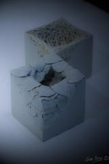 Nid, La Piscine II (Olivb77) Tags: expo lapiscine céramique roubaix