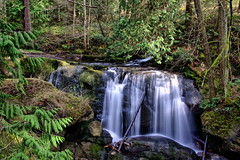 Water Fall 2 (Zahidur Rahman ( Will be back soon )) Tags: park trees green water forest waterfall washington cam what autofocus cherrypoint greaterphotographers ◆challengeclub◆