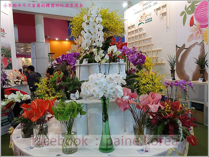 高陽國際花卉博覽 (65).JPG