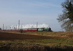 Mayflower North of Langford (simmonsphotography) Tags: railroad english heritage train br engine railway steam british locomotive preserved railtour excursion mayflower eastcoast b1 langford biggleswade lner ecml uksteam cathedralsexpress 61306