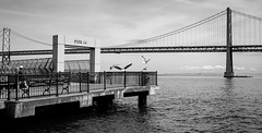"""Pier 14 • <a style=""""font-size:0.8em;"""" href=""""http://www.flickr.com/photos/54083256@N04/16862165316/"""" target=""""_blank"""">View on Flickr</a>"""