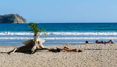 P1010898.jpg 2 1.3 (ChanHawkins) Tags: people beach costarica samara peopleatplay lumixfz1000