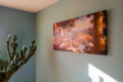 Cereus peruvianus monstrose. (Mike's Mode (Miguel H.)) Tags: michigan cereus peruvianus monstrose