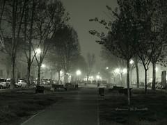 ore 05.27 : Nebbia in via Don Morosini (Francesco De Benedetto La Rosa) Tags: nebbia nottedinebbia